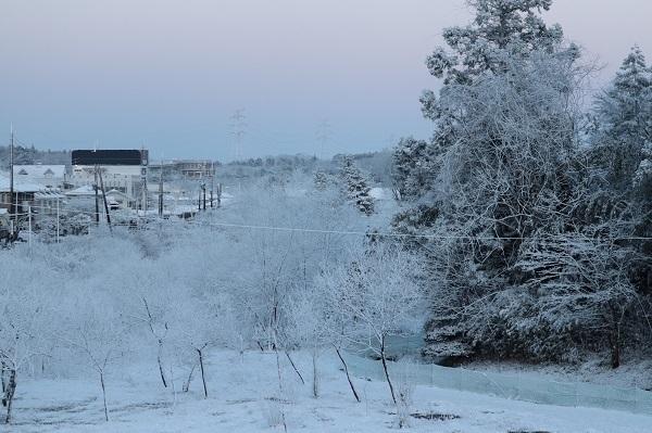 予想外の雪6