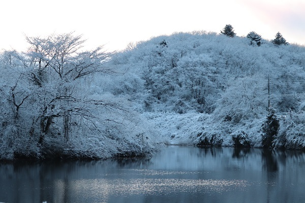 予想外の雪7