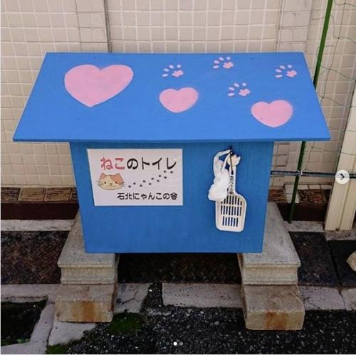 野良猫用トイレ001