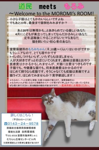 もろみちゃん005