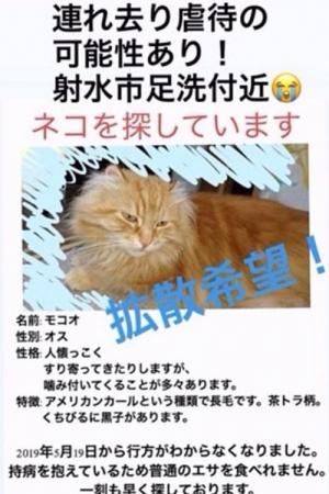 nekogoroshi_otoko_02_20190623182653e80.jpg