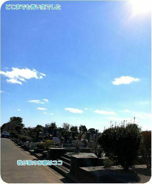 ⑦どこまでも青い空
