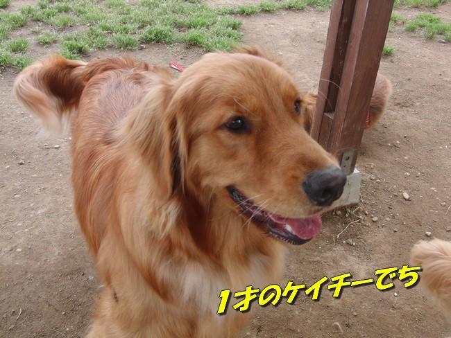 20102.jpg