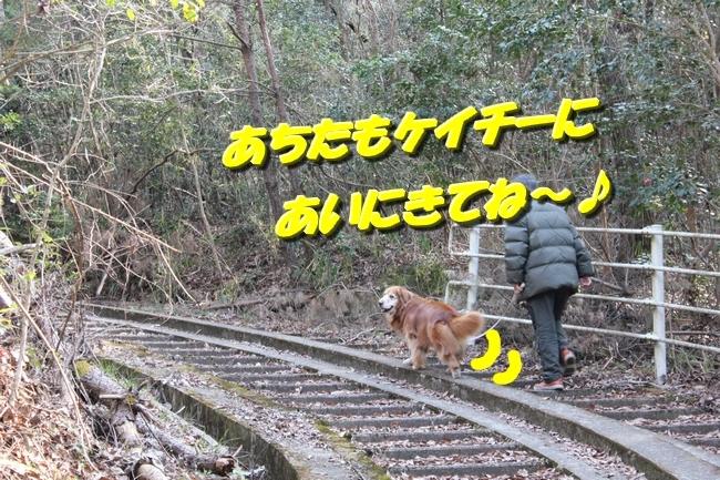 ロングお散歩 103
