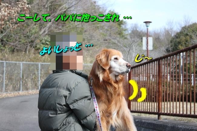 ロングお散歩 064