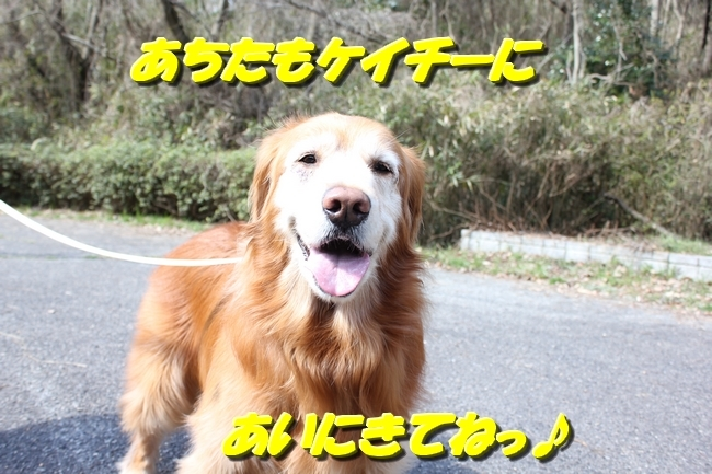 ロングお散歩 091