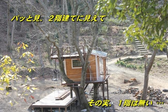 ロングお散歩 076