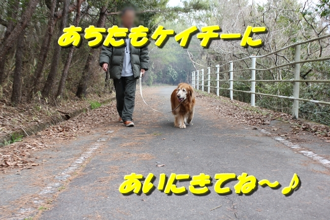ロングお散歩 145