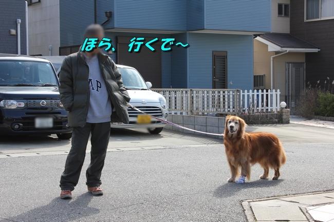 ロングお散歩 042