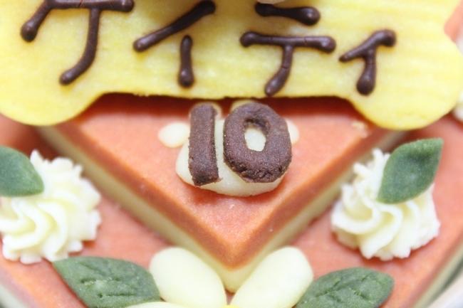 10才の誕生日 171