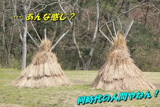 パパと三木山森林公園 073