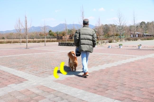 0404桜防災公園 002
