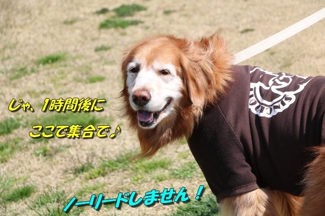 0404桜防災公園 009