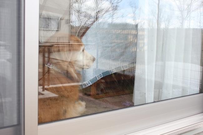 外窓監視タイム 007