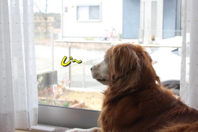 外窓監視タイム 020