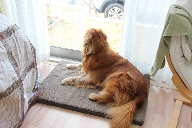 外窓監視タイム 022