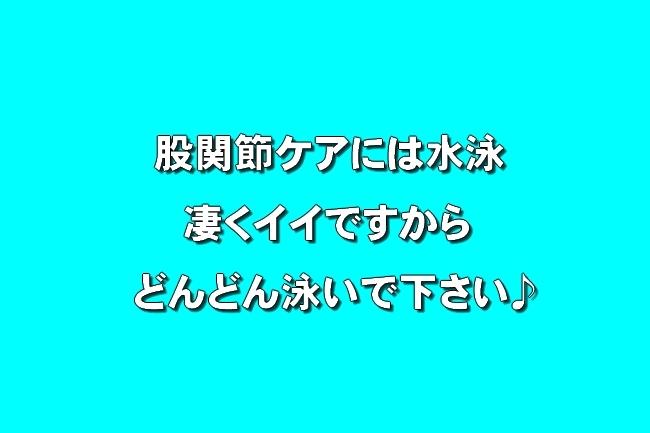 播磨中央公園の桜 372