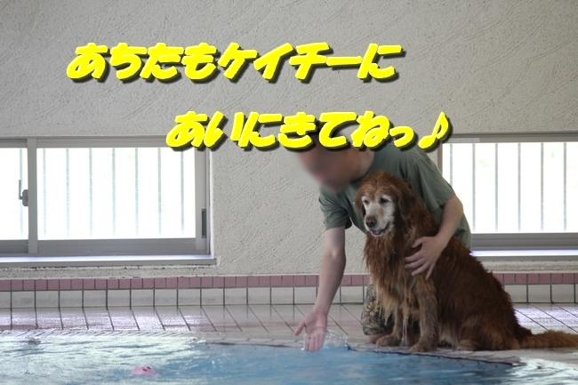 ジャックくんおかゆちゃん令和初プール 228