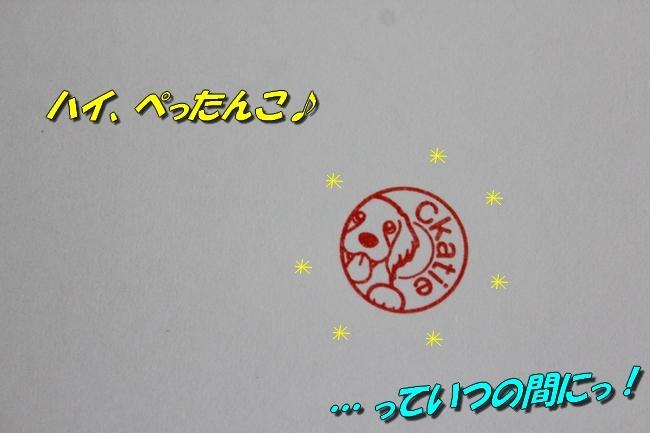 リンちゃんマックスくん 009