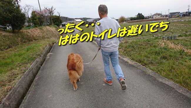 DSC_2333.jpg