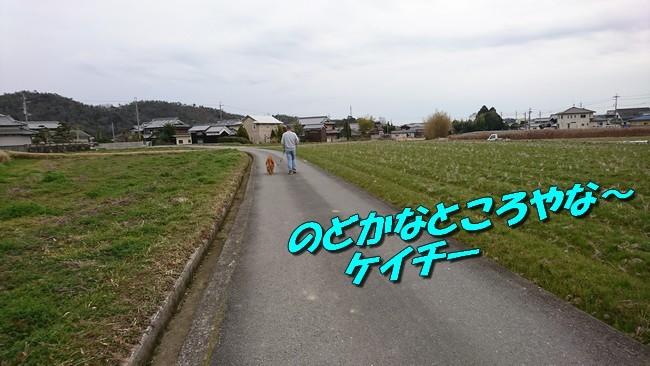 DSC_2336.jpg