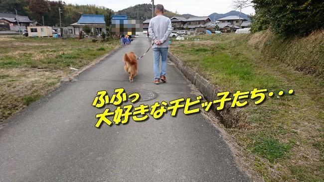 DSC_2339.jpg