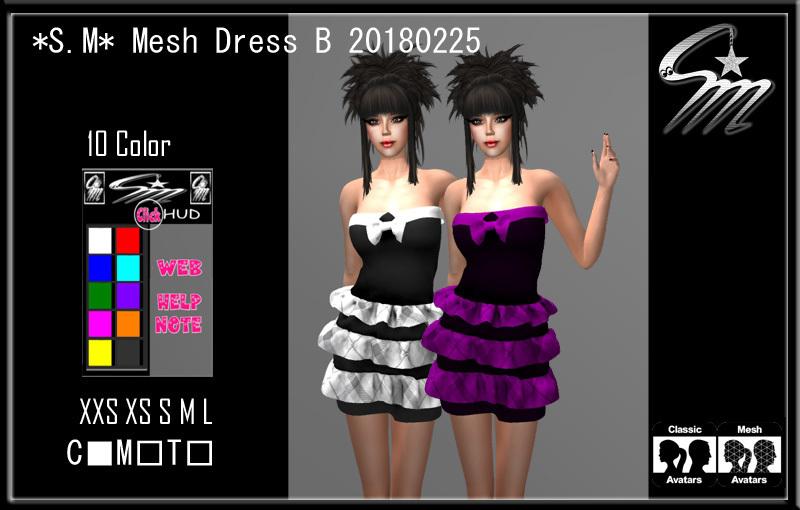 Mesh Dress B 20180225