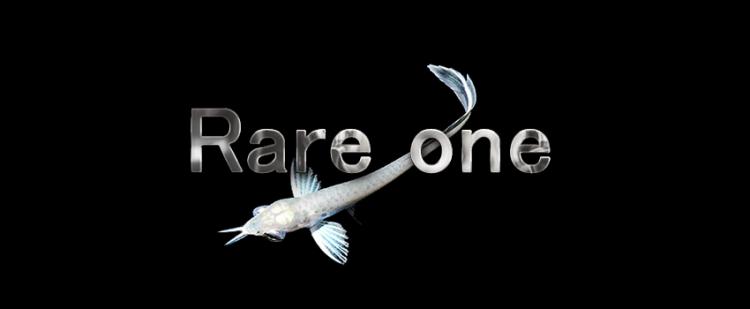 Rare one
