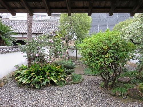 IMG_1565 大川筋武家屋敷