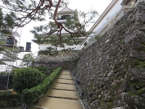 IMG_1434 高知城