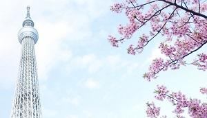 東京イメージ4