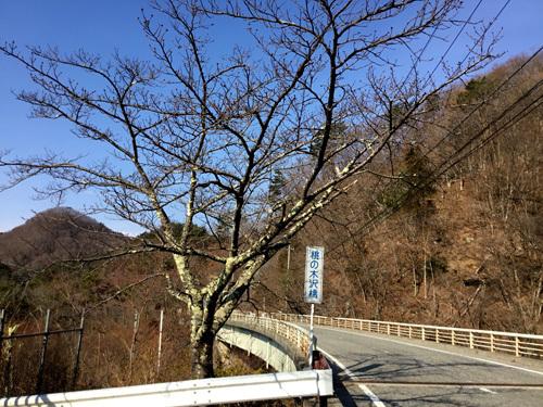 20190317 荒川ダムの桜 (3)