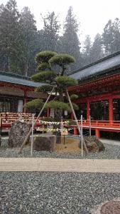20190317 金櫻神社 雪