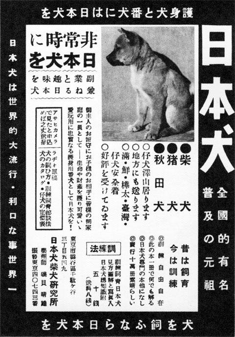 日本犬1938jun