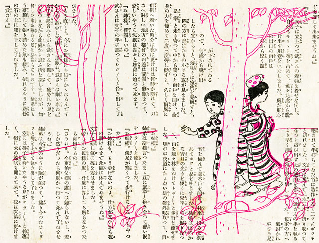 野菊1913oct