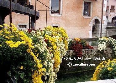堰を飾る花REVdownsize
