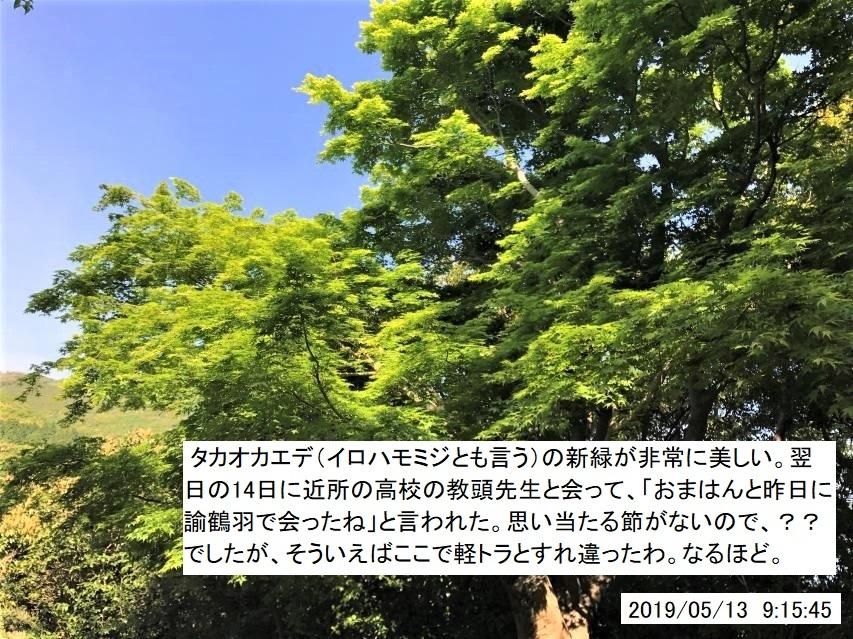 2019年5月13日 諭鶴羽川源流域大周回