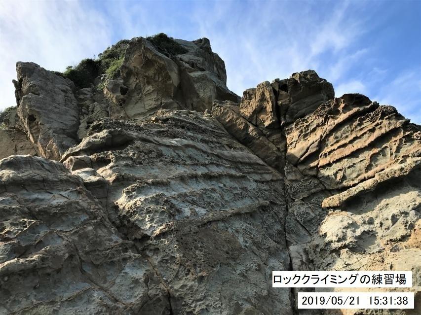 5月21日の淡路島最南端付近の観察写真ギャラリー
