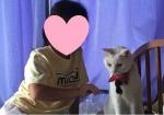 きぬスマホ画像・ゆみちゃん&きぬちゃん・修正版・ブログ用