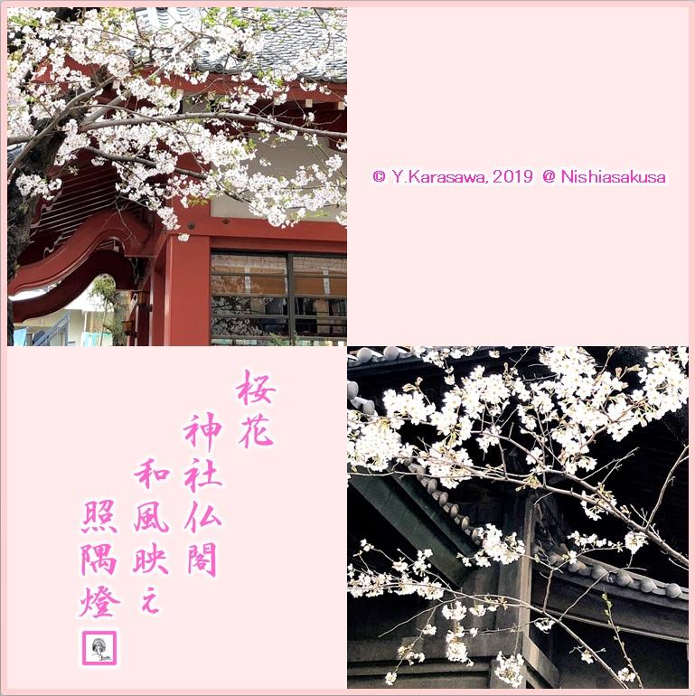 190403桜と和風建築LRG