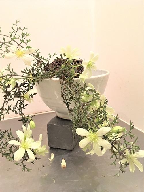 cafe zincの花