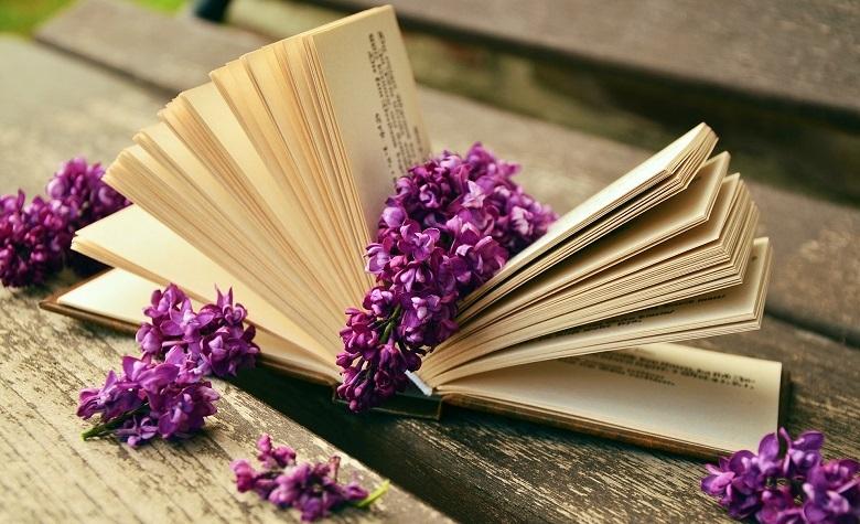book_523_780.jpg