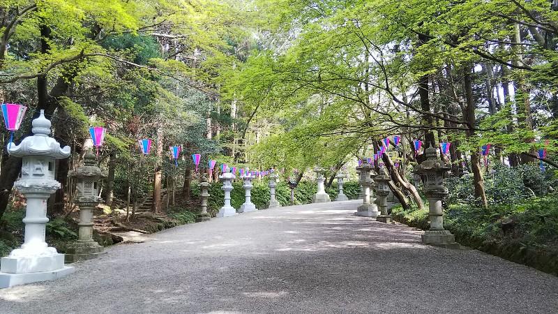 香取神宮表参道201904