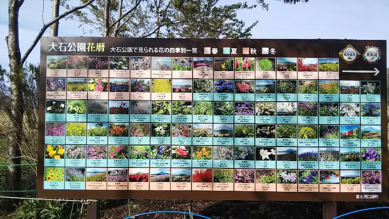 大石公園花暦201904