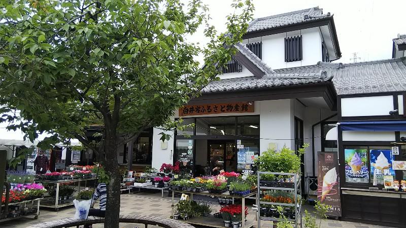 道の駅こもち白井宿ふるさと物産館201905