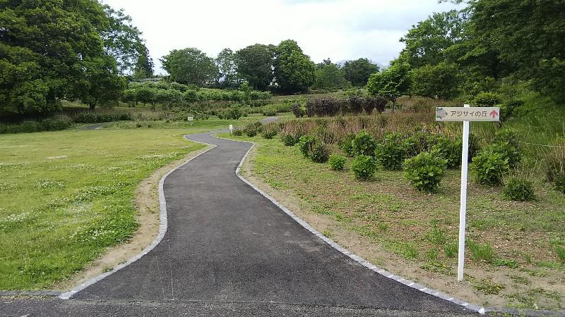 道の駅赤城の恵あじさいの丘入口201905