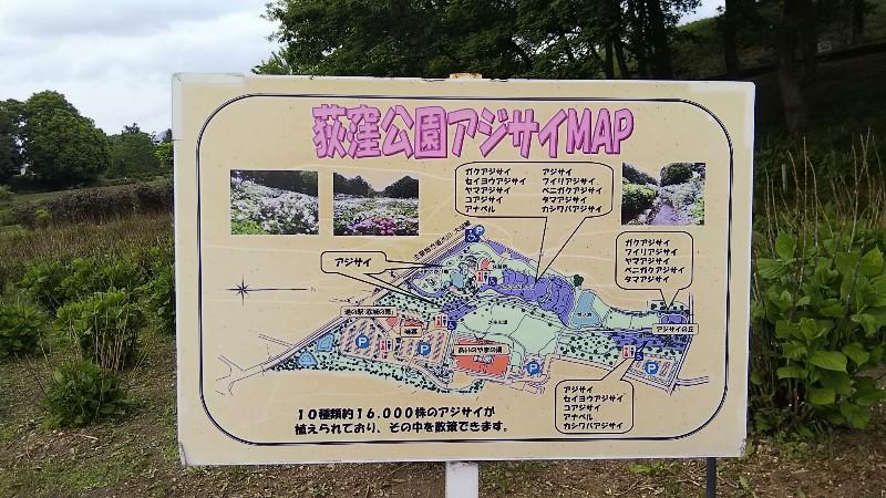 道の駅赤城の恵荻窪公園アジサイMAP201905