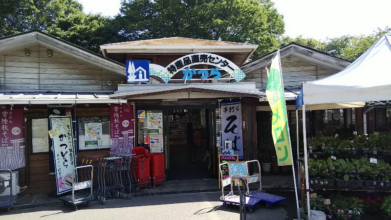 道の駅かつら直売所201905