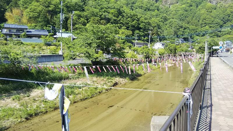 袋田の滝こいのぼり201905