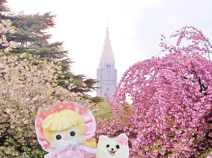 またね 八重桜の新宿御苑
